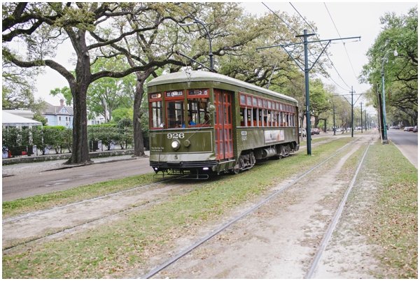 Street_Car_New_Orleans_St_Charles_Ave_12